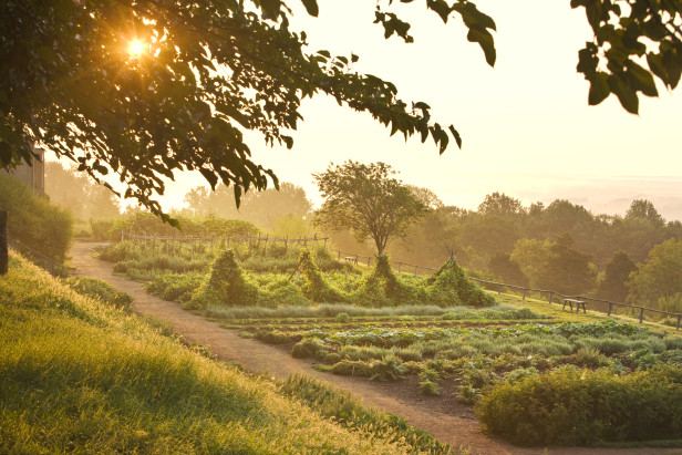 Thomas Jefferson's Monticello vegetable garden